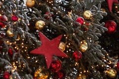 Christmas tree. Decorated Christmas tree. Good background for postcard royalty free stock photo