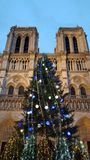 Christmas at the Cathédrale Notre-Dame de Paris. A Christmas tree decorated for the holiday with lights and ornaments in front of the Cathédrale Notre Royalty Free Stock Images