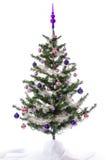 Christmas tree decorated Stock Image