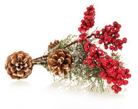 Christmas tree decorated with pine cones and snow Stock Image