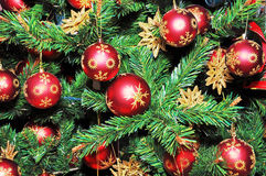 Christmas Tree Decorated with Red Balls. royalty free stock images