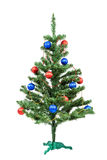 Christmas tree decorated red and blue balls. Royalty Free Stock Photography