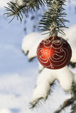 Christmas tree decoration 11. Christmas tree decoration handing on fir tree covered with snow Royalty Free Stock Photography