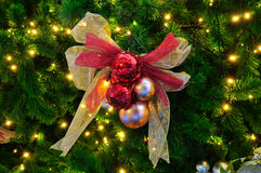 Christmas tree with decoration Stock Image