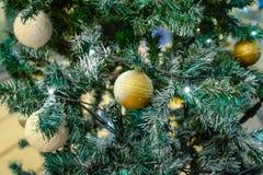 The christmas tree. Stock Photo