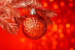 Christmas tree with decoration ball. Branch of Christmas tree with decoration ball Stock Photo