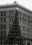 Christmas Tree Decoration on Building in Pittsburgh Royalty Free Stock Photos