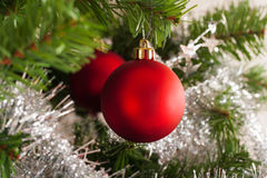 Christmas tree decoration on a fir Stock Images