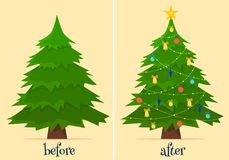 Christmas tree before and after decoration. Fir in forest and in room with gifts and lights. Flat cartoon style vector illustration Stock Photos