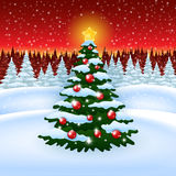 Christmas tree with decoration in the Forest Royalty Free Stock Photo