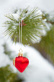 Christmas tree decoration Stock Photography