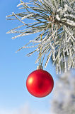 Christmas-tree decoration on a pine Stock Photo