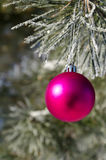 Christmas-tree decoration on a pine Stock Images