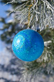 Christmas-tree decoration on a pine. Tree covered with hoarfrost Stock Images