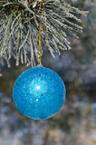 Christmas-tree decoration on a pine. Tree covered with hoarfrost Royalty Free Stock Image