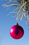 Christmas-tree decoration on a pine Royalty Free Stock Photos