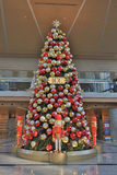 Christmas tree decoration in shopping mall. The Christmas tree decoration in shopping mall Stock Images