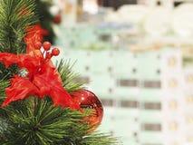 Christmas tree and Christmas decorations royalty free stock photo