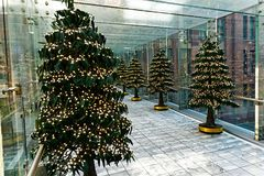 Christmas Tree Decorations in Glass Enclosed Walkway Royalty Free Stock Images