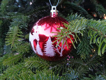 Christmas tree decorations, nice red ball among green fir branches. Red Christmas ball on Christmas tree, New Year greeting card Stock Photography