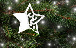 Christmas tree with decorative star Royalty Free Stock Photography
