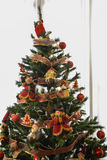 Christmas tree decotared. Amazing and great Christmas tree decotared royalty free stock image