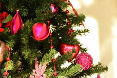 Christmas tree 1 Royalty Free Stock Images