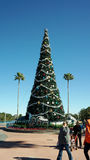Christmas Tree at Disney's Hollywood Studios Stock Photos