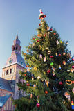 Christmas tree in Dome Square in Riga on background Cathedral Royalty Free Stock Photos