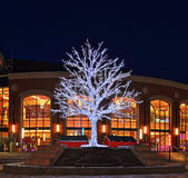 Christmas tree in downtown Brampton, Ontario. Christmas tree in front of the Rose Theatre at the Lorna Bissell Fountain in Garden Square in downtown Brampton stock images