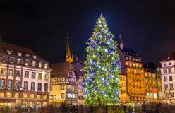Christmas tree at the famous Market in Strasbourg, France. Christmas tree at the famous Christmas Market in Strasbourg - Alsace, France Royalty Free Stock Image