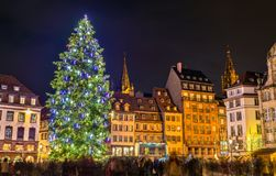 Christmas tree at the famous Market in Strasbourg, France. Christmas tree at the famous Christmas Market in Strasbourg - Alsace, France Stock Images