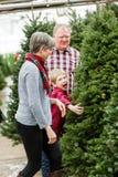Christmas tree farm Royalty Free Stock Photos