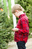 Christmas tree farm Royalty Free Stock Photos
