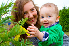 Christmas Tree Farm Portraits Royalty Free Stock Photography