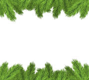 Christmas tree fir. Christmas Tree Borders,  On White Background, Vector Illustration Royalty Free Stock Photography