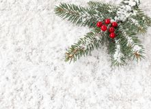 Christmas Tree Fir Twig with Red Holly Berries on Snow. Christmas tree fir twig with red holly berries covered with snowflakes and laying on snow royalty free stock photo