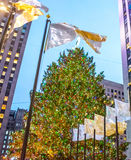 Christmas Tree and Flags Royalty Free Stock Images