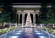 Christmas tree and fountain royalty free stock photo