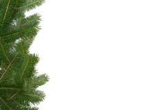 Christmas tree frame Stock Image