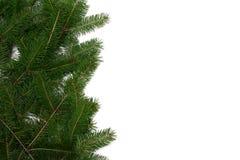 Christmas tree frame stock photos