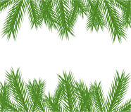 Christmas tree frame. Christmas tree fir branches  frame background Royalty Free Stock Photo