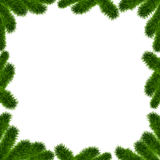Christmas Tree frame. Christmas Tree Borders, Fir Tree Frame with place for text isolated on white background Royalty Free Stock Photo