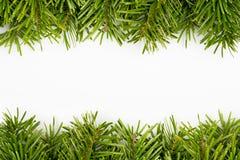 Christmas tree frame Royalty Free Stock Photos