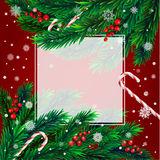 Christmas tree with frame Stock Photography