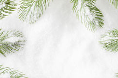 Christmas Tree Fronds Frame Royalty Free Stock Photos