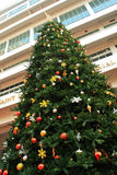 Christmas tree front of the building Royalty Free Stock Image