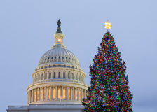 Christmas tree in front of Capitol Washington DC Royalty Free Stock Images