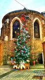 Christmas tree. In front of French church Royalty Free Stock Image