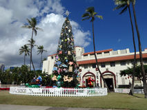 Christmas Tree in front of Honolulu Hale. HONOLULU - DECEMBER 16, 2013: 50-foot Norfolk pine Christmas Tree in front of Honolulu Hale, the Mayor Office, as part Stock Photography